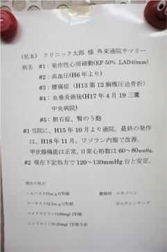 ※病歴/内服薬一覧表(サマリー)の例